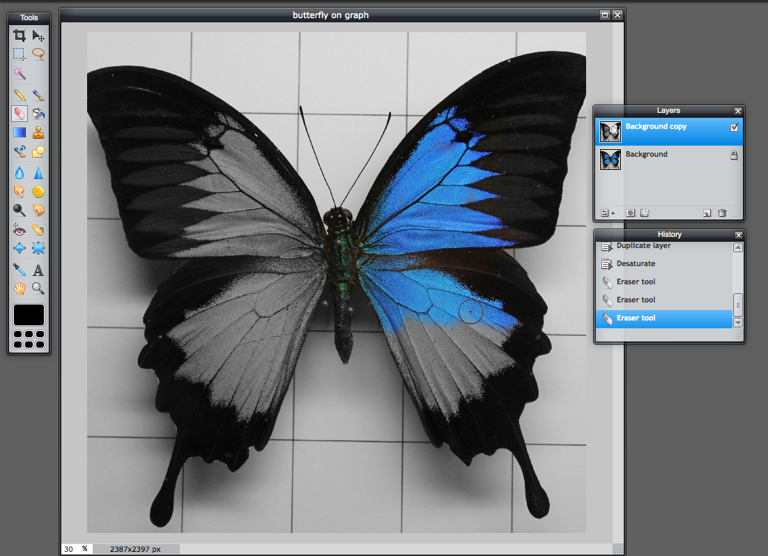 A quick guide to selective coloring in Pixlr Editor – Pixlr Blog