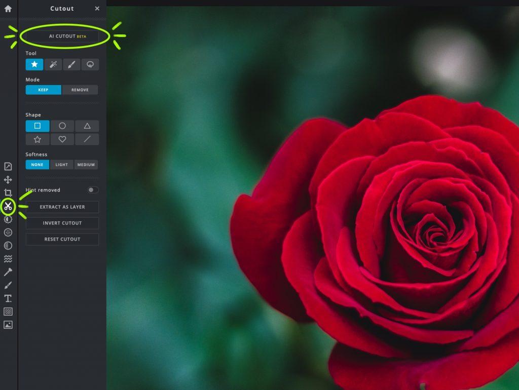 Pixlr X's AI Cutout Tool - Automate Your Image Cutouts! - PIXLR Blog